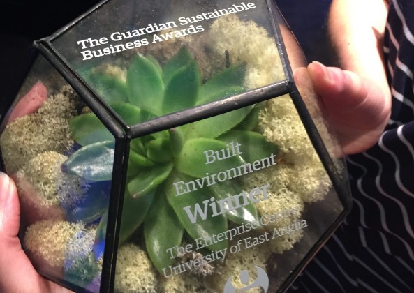 Photo of Guardian Sustainable Business Award